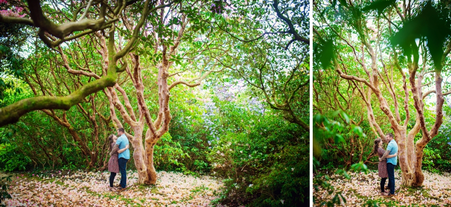New Forest Wedding Photographer Exbury Gardens Engagement Session - Richard and Lynsey - Photography By Vicki_0001