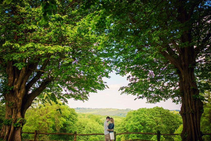 Nymans Wedding Photographer Engagement Session Andy and Rosanna Photography by Vicki_0011