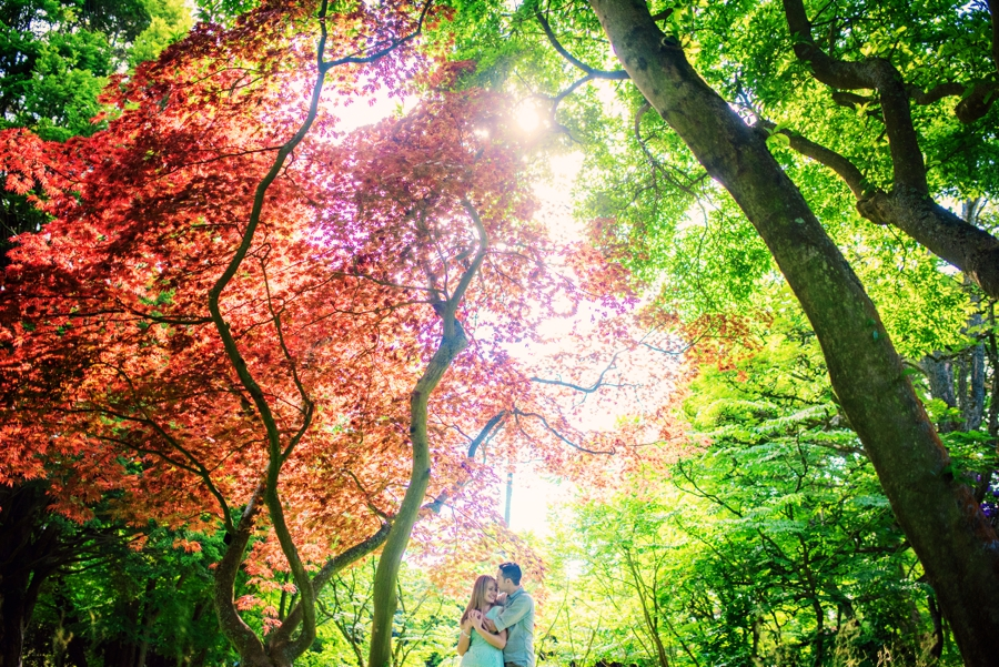 Nymans Wedding Photographer Engagement Session Andy and Rosanna Photography by Vicki_0054